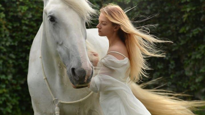 Comment acheter une selle pour faire du cheval ?